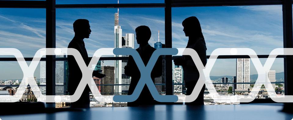Cross Consult - Regionales Frankfurter Mentoring